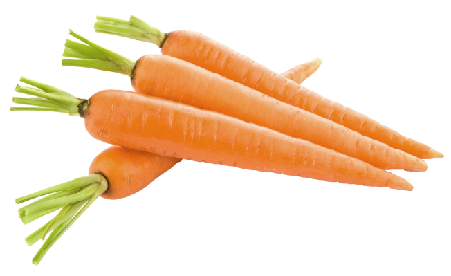 carrot_PNG4985